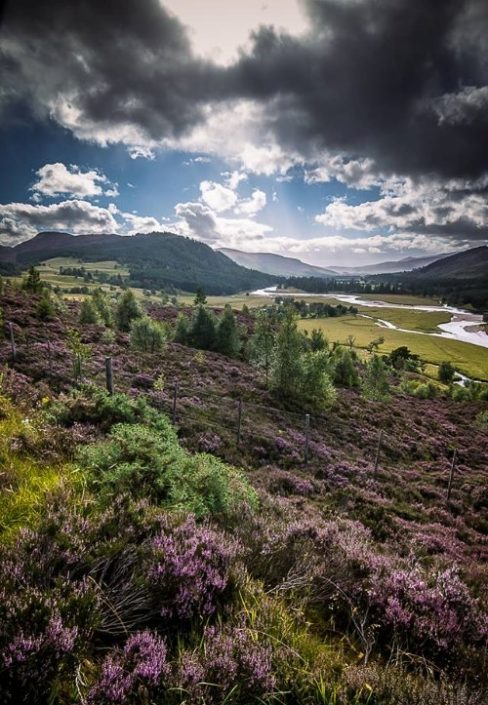 about discover highlands